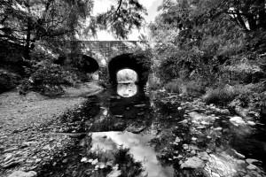 Shoal-Creek-023-1024x683